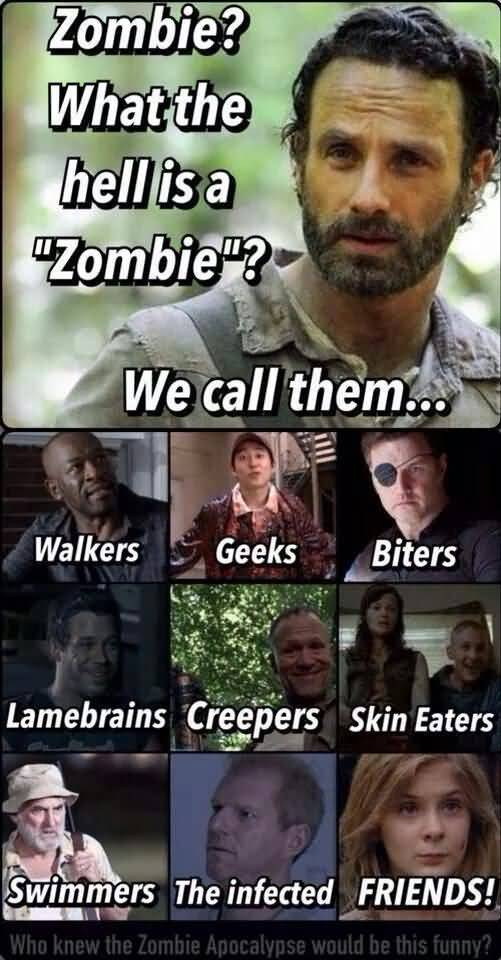 Funny Walking Dead Quotes Meme Image 14 Quotesbae