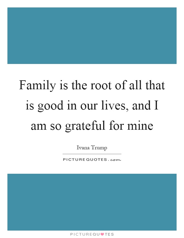 Grateful For Family Quotes Meme Image 13