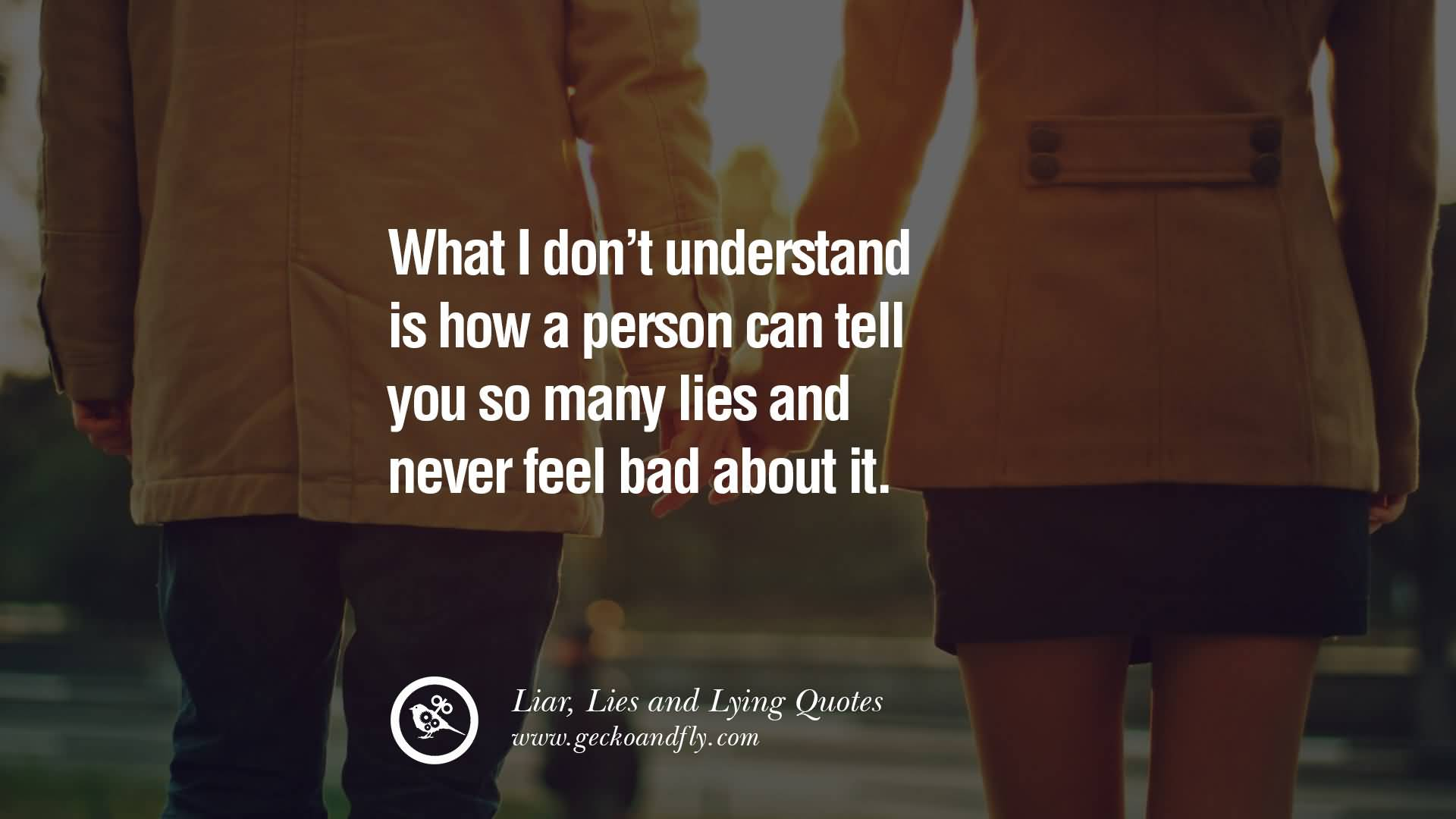Hate Liars Quotes Meme Image 18