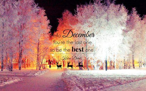 Hello December Quotes Meme Image 08
