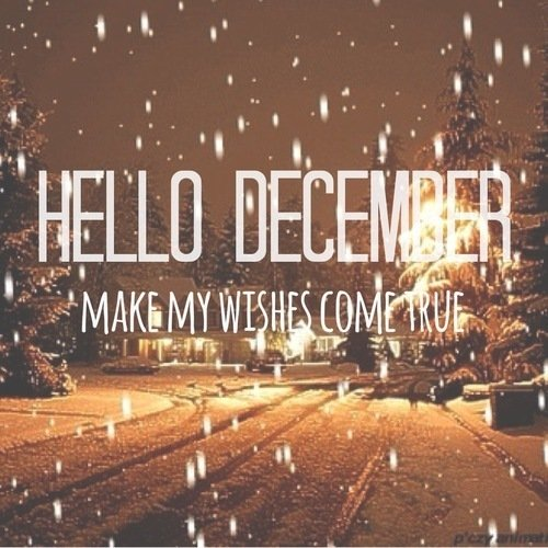 Hello December Quotes Meme Image 10