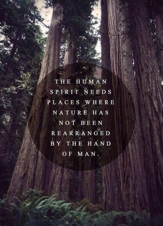 Nature Quotes Pinterest Meme Image 05