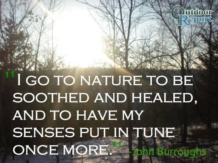 Nature Quotes Pinterest Meme Image 10