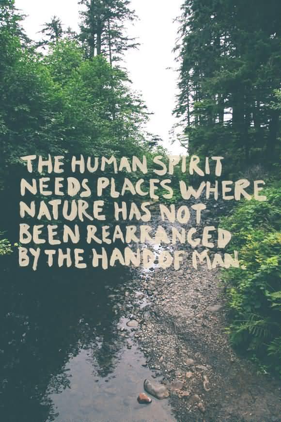 Nature Quotes Pinterest Meme Image 12