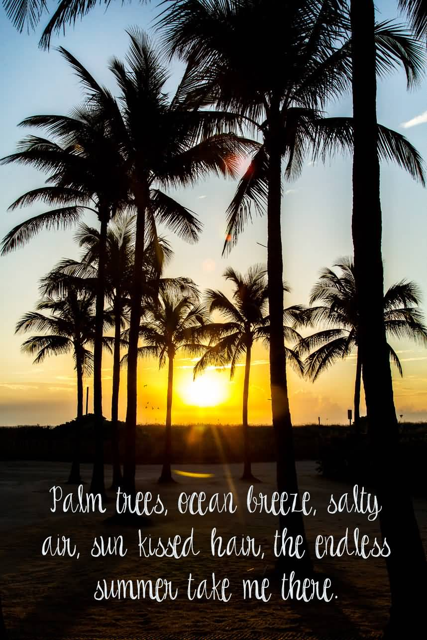 25 Palm Tree Quotes Sayings Slogans Images Quotesbae