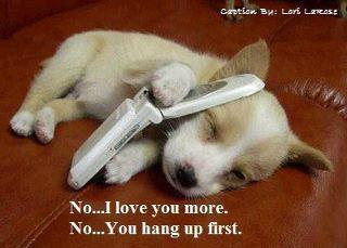Puppy Love Quotes Meme Image 04