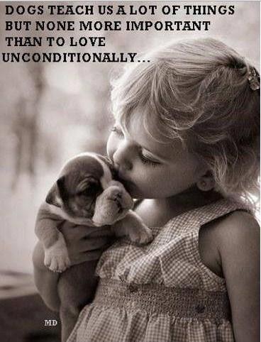 Puppy Love Quotes Meme Image 10