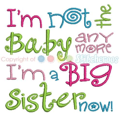 Quotes About Big Sisters Meme Image 16
