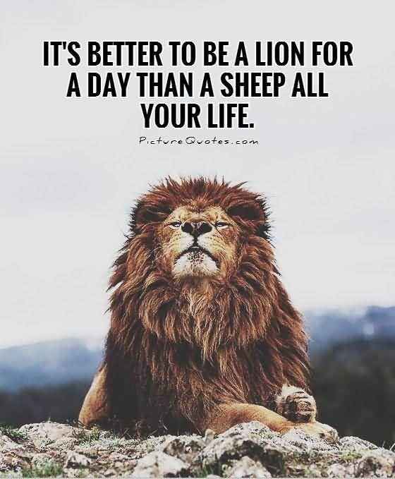 Quotes About Lions Meme Image 09