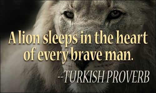 Quotes About Lions Meme Image 11