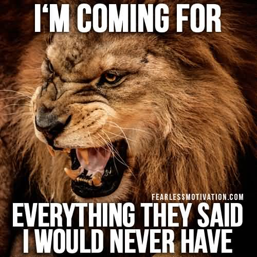 Quotes About Lions Meme Image 20