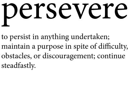 Quotes About Perseverance Meme Image 09