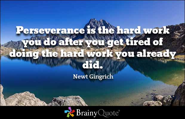 Quotes About Perseverance Meme Image 10