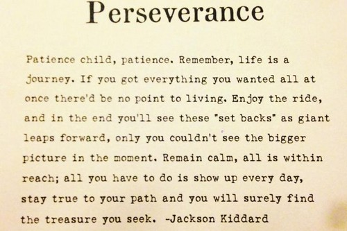 Quotes About Perseverance Meme Image 14