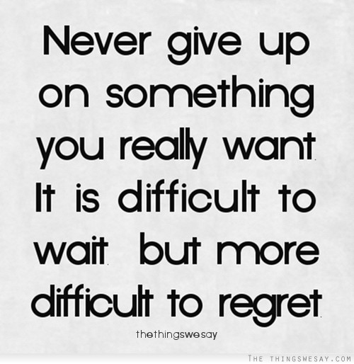 Quotes About Perseverance Meme Image 16