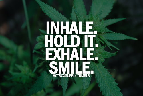 Quotes About Weed Meme Image 11