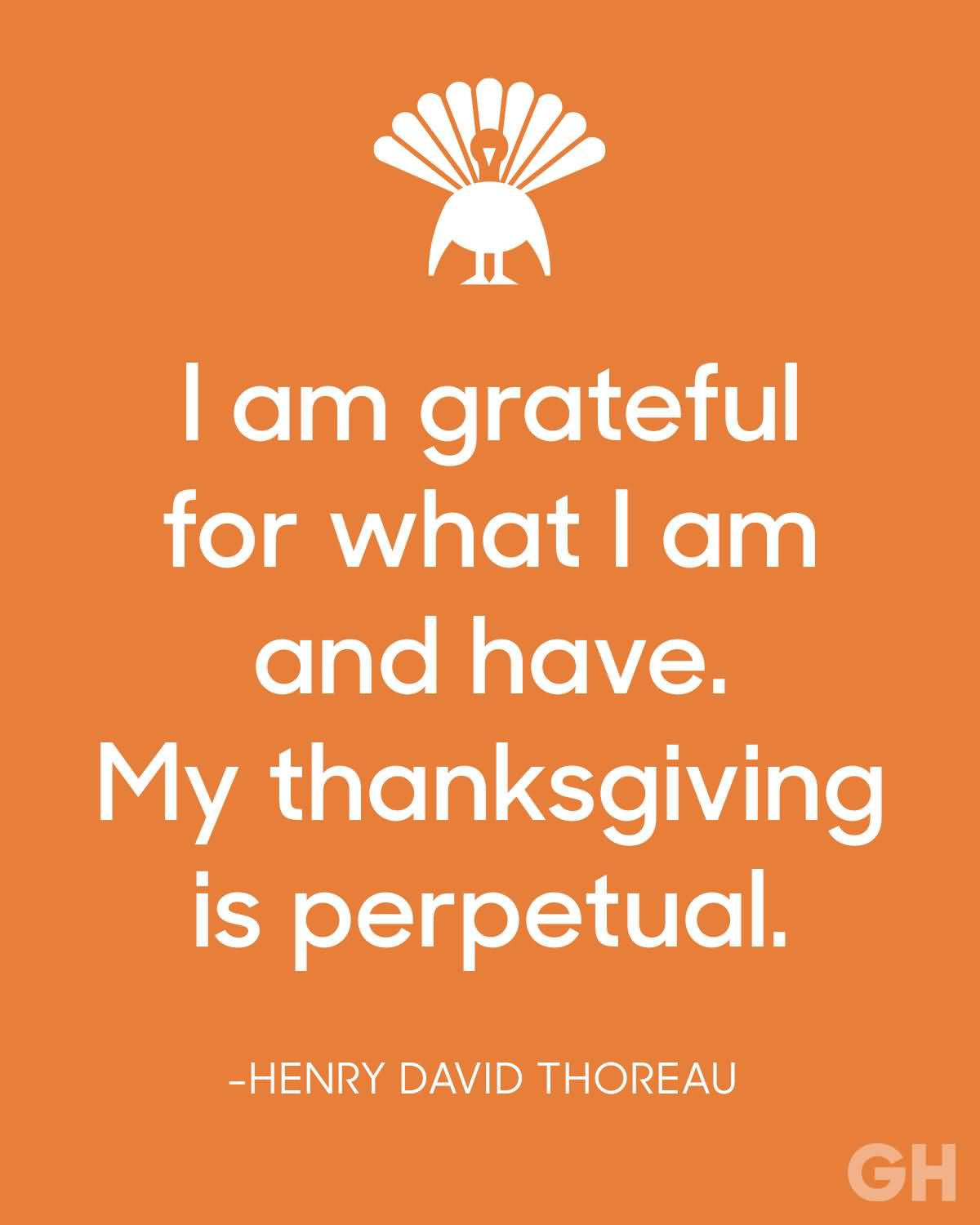 Thanksgiving Quotes Images Meme Image 16