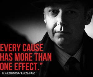 The Blacklist Quotes Meme Image 13