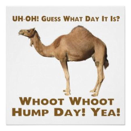 Uh Oh! Guess What Day It Is Whoot Whoot Hump Day! Yea!