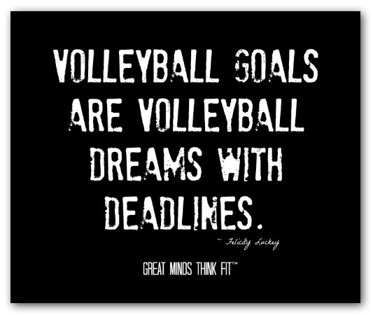 Volleyball Inspirational Quotes Meme Image 13