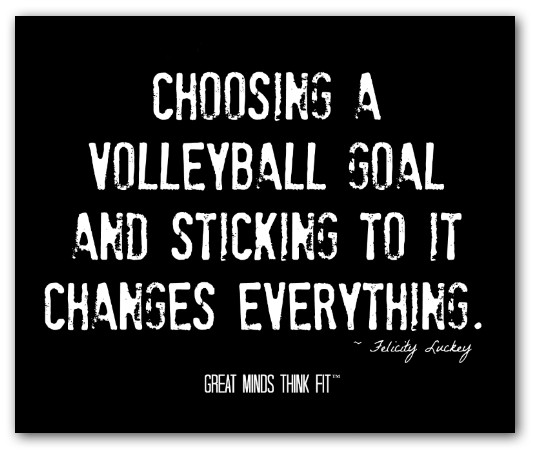 Volleyball Inspirational Quotes Meme Image 14
