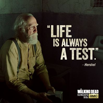 Walking Dead Quotes Meme Image 01