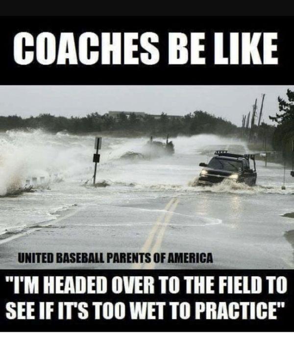 Best baseball coach meme photo