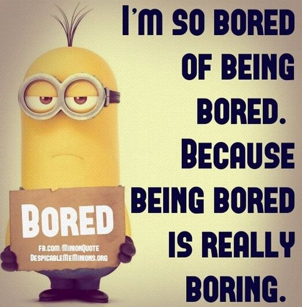 Boring pictures funny captions pictures