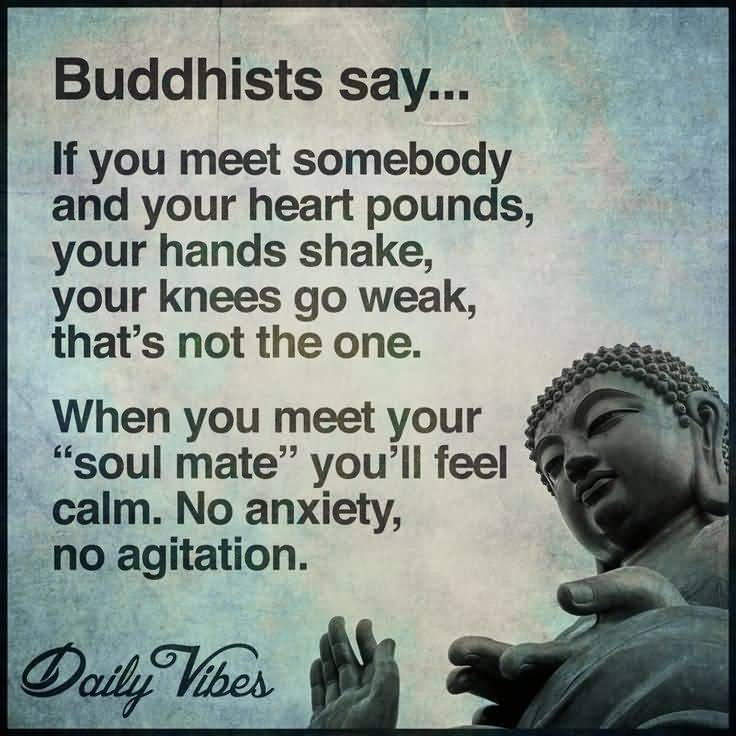 Buddha Love Quotes 18 Quotesbae