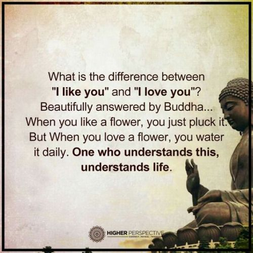 Buddha Quotes About Love 15