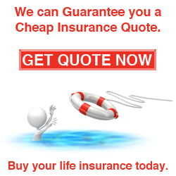 Cheap Life Insurance Quote 15
