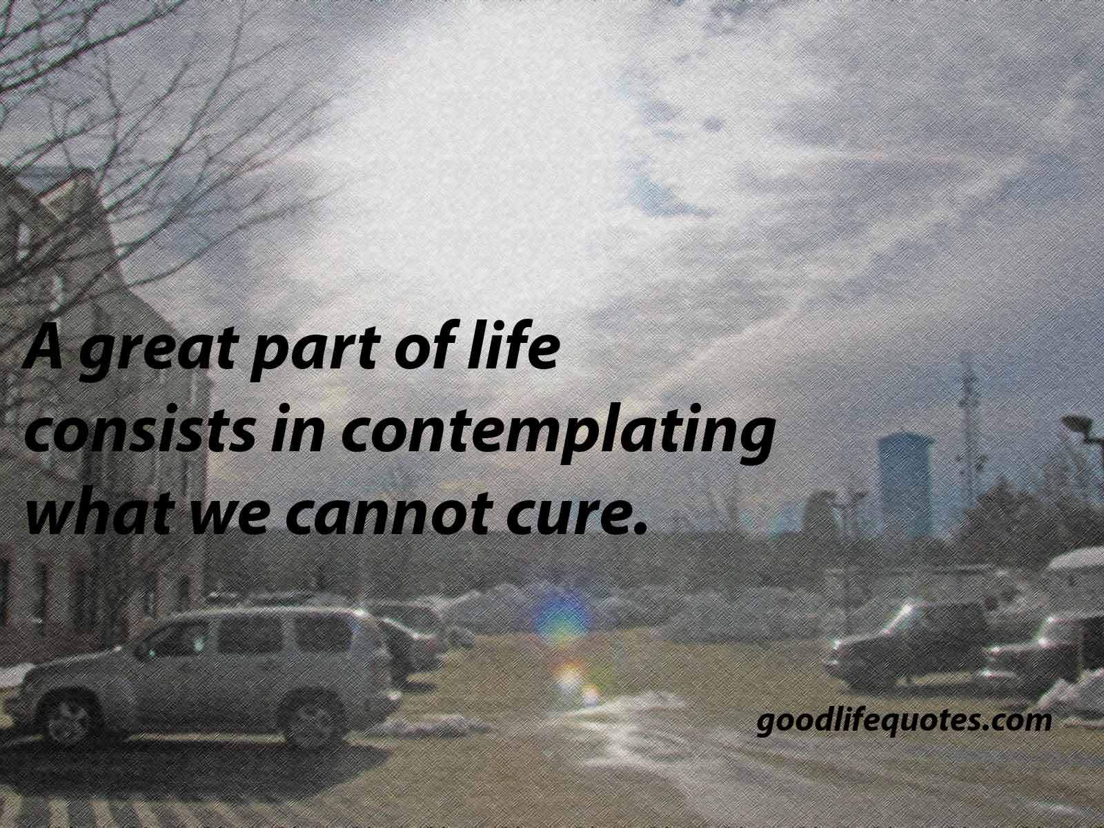 Contemplating Life Quotes 15
