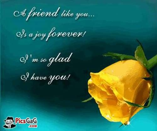 20 Cute Short Quotes About Friendship Images Quotesbae