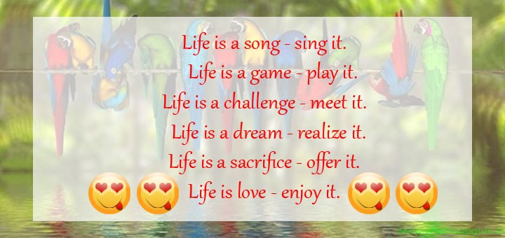 Daily Life Quotes 12