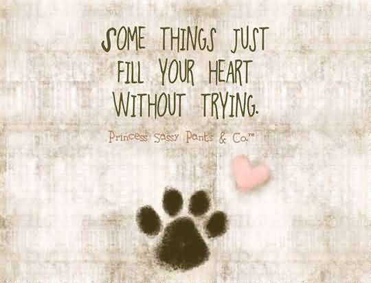 Dog Love Quotes 17