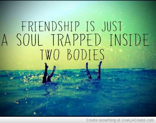 English Quotes About Friendship 15