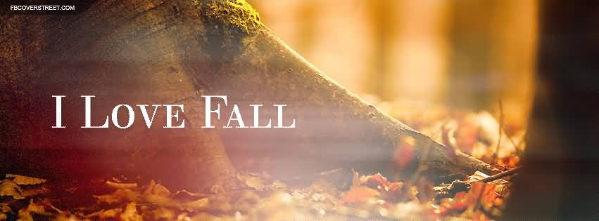 Fall Quotes About Love 08