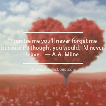 Famous Love Quotes 11