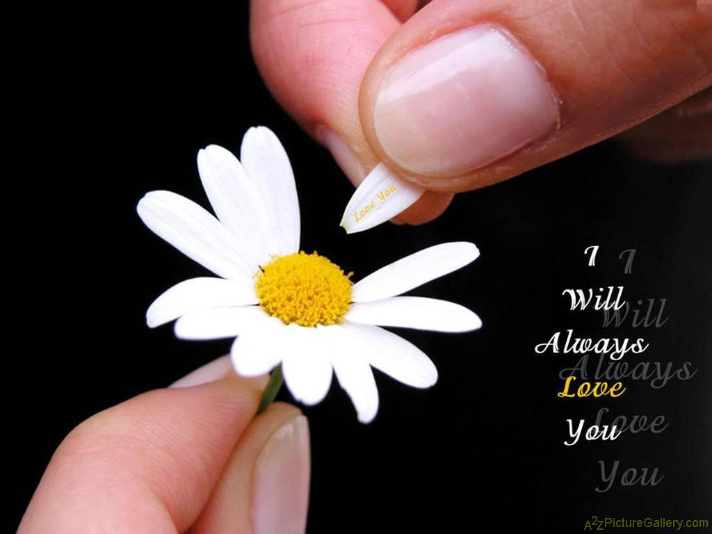 Flower And Love Quotes 10