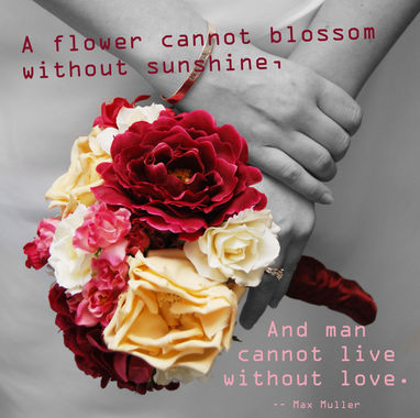 Flowers Love Quotes 09