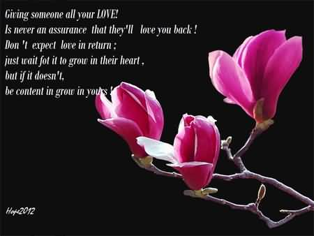 Flowers Love Quotes 16