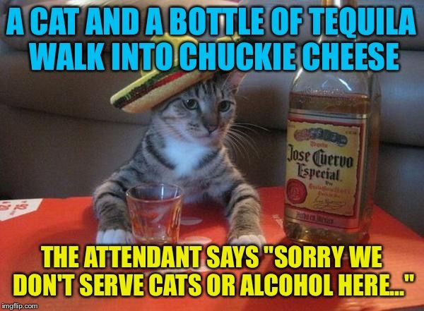 Funny Alcohol memes picture