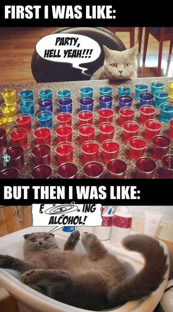 Funny Alcoholism meme photo