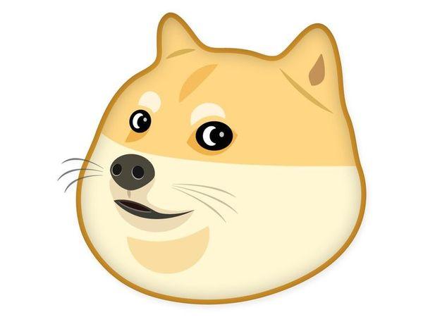 Funny Doge Cartoon Joke