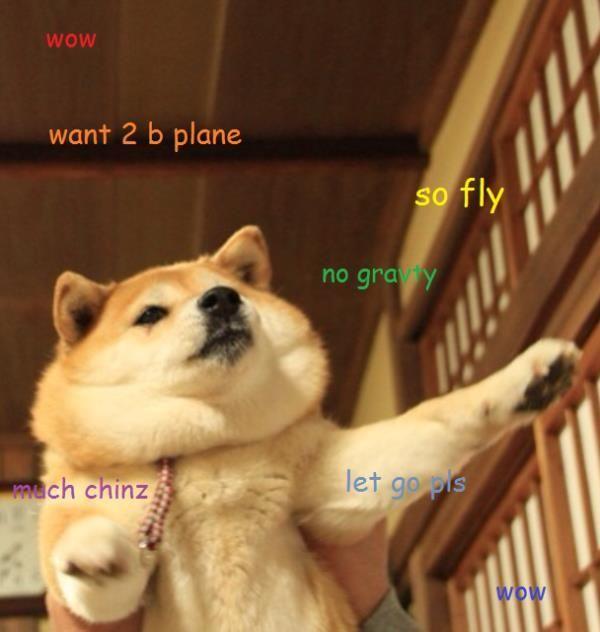 Funny Doge Jokes Memes