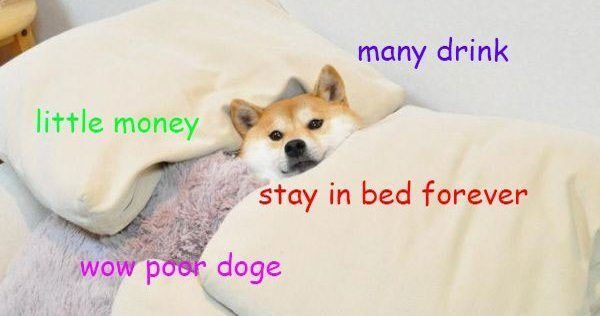 Funny Doge Meme Joke