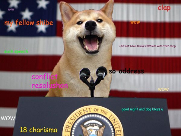 Funny Doge Meme Photos