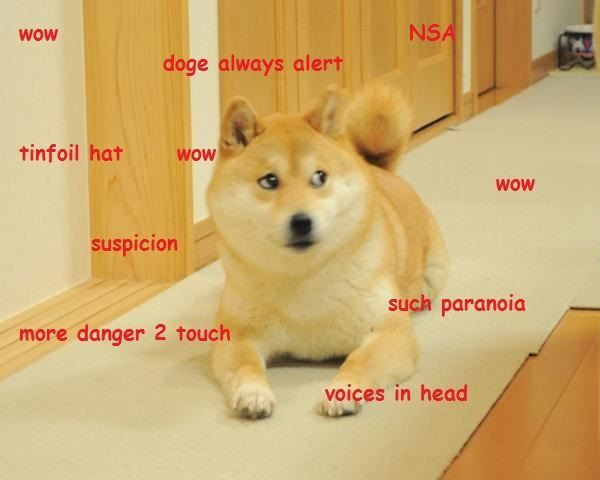 Funny Doge Meme Picture