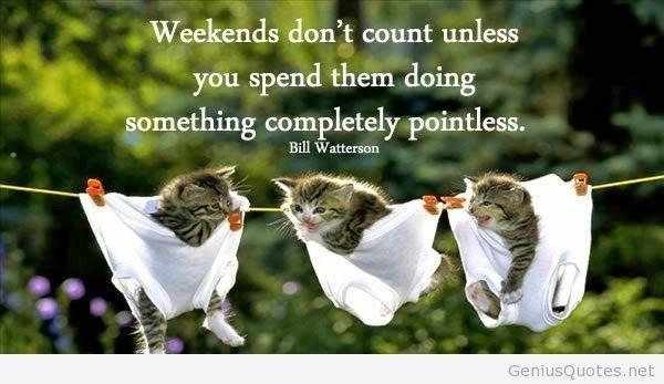 Funny Happy Saturday Images Meme