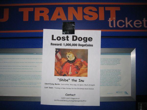 Funny Lost Doge Meme Joke
